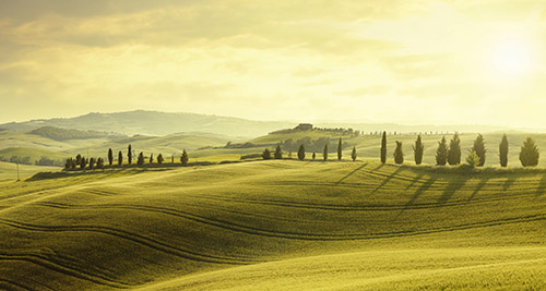 TUSCANY TOURIST GUIDE