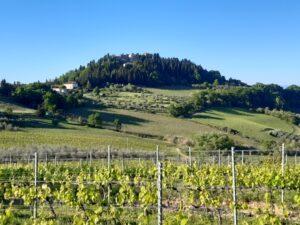 Guide in Toscana. Visite guidate al castello di Lucardo